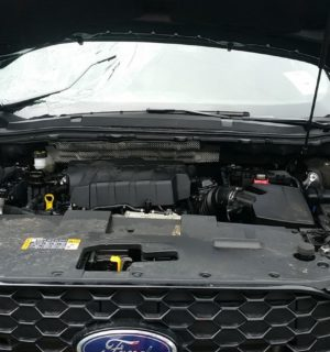 2019 FORD ENDURA ENGINES